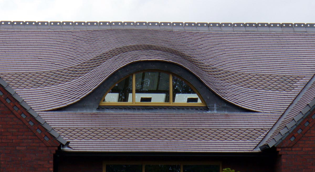 This Blue Brindle Eyebrow roof line adds detail to the roofscape while bringing in light